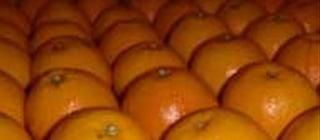 naranjas denia