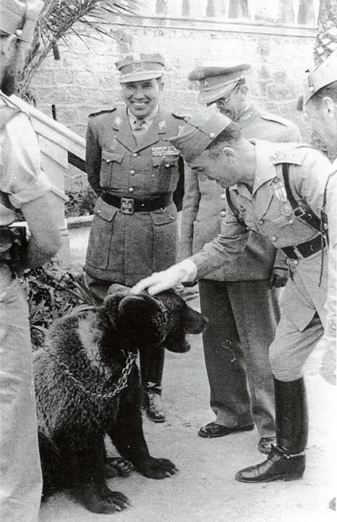 Mascotas de la Legión Oso Magan
