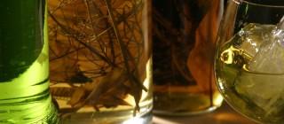 panoramica-alimentos-bebidas-espirituosas-hierbas-de-mallorca