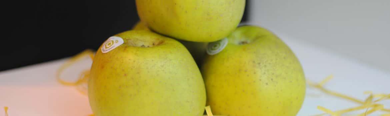 manzanas del bierzo