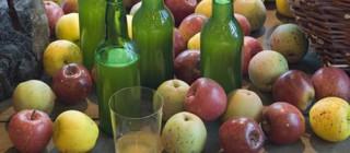 sidra manzanas covadonga
