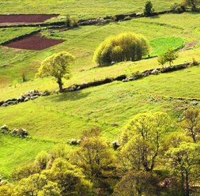 Ancares Mountains of Galicia