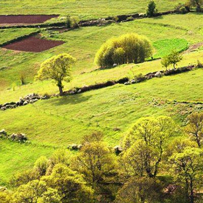 Sierra de los Ancares de Galice