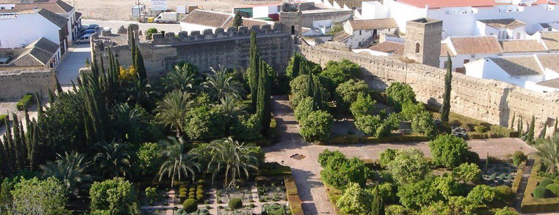 Panorámica que ver en Palma del Río