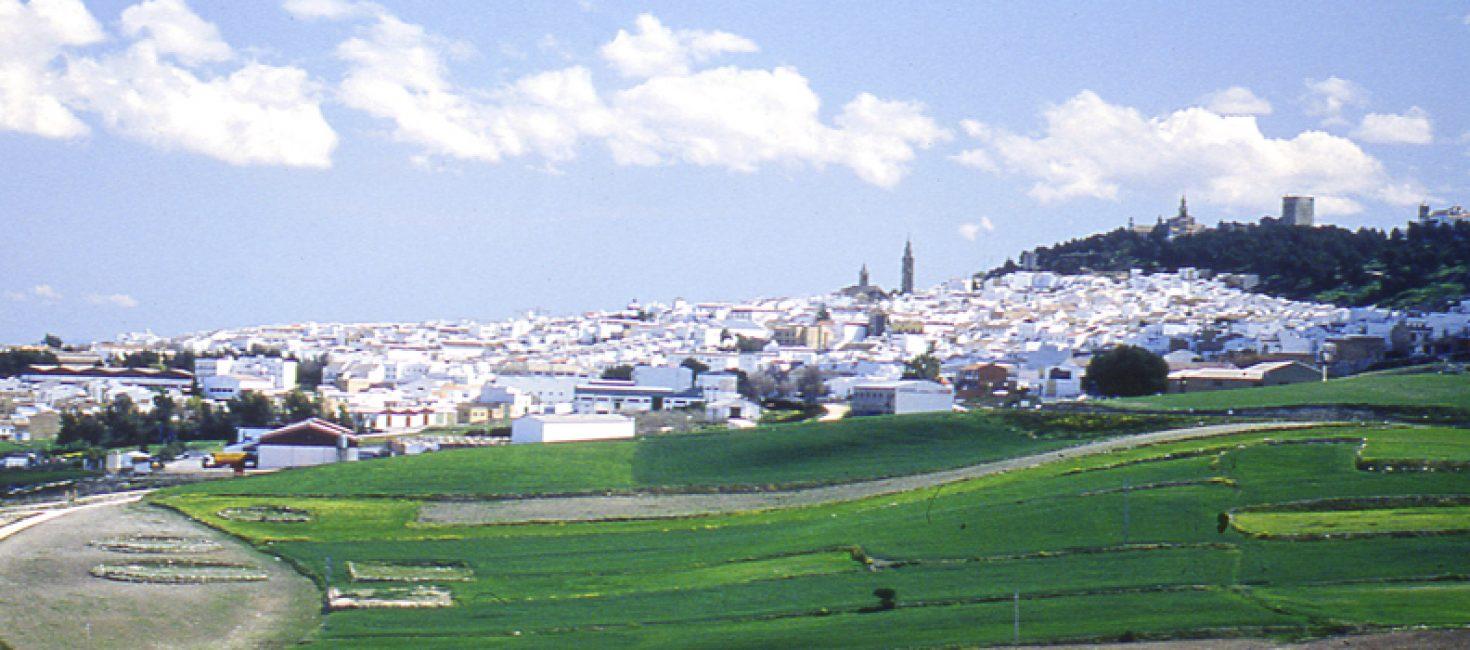 Where to sleep in Estepa