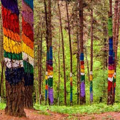 Qué ver en Bosque de Oma – Santimamiñe