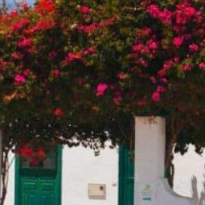 Dónde dormir en Haría – Lanzarote