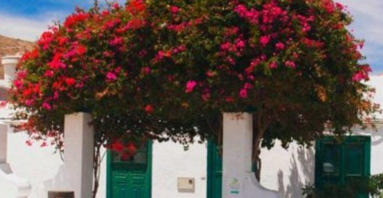 Dónde dormir en HARÍA – Lanzarote.