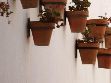 Alfarería y Cerámica de Cádiz