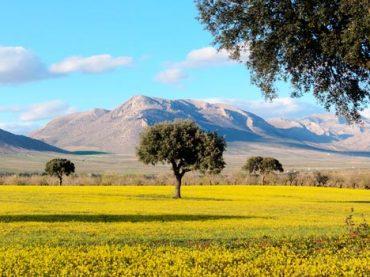 Parque Natural de Sierra María – Los Vélez