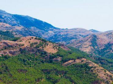 Parque Natural de la Sierra de las Nieves