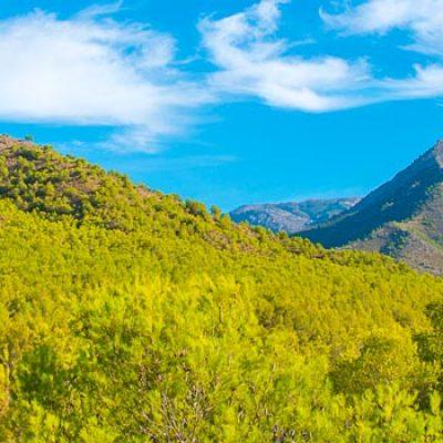 Parque Natural de la Sierra de Tejeda, Almijara y Alhama