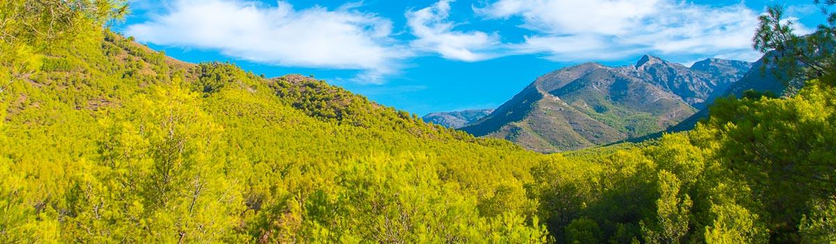 Sierra de Tejeda