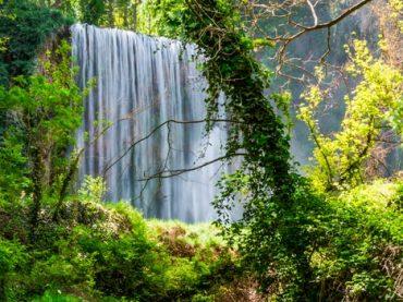 Parque Natural del Monasterio de Piedra y alrededores.