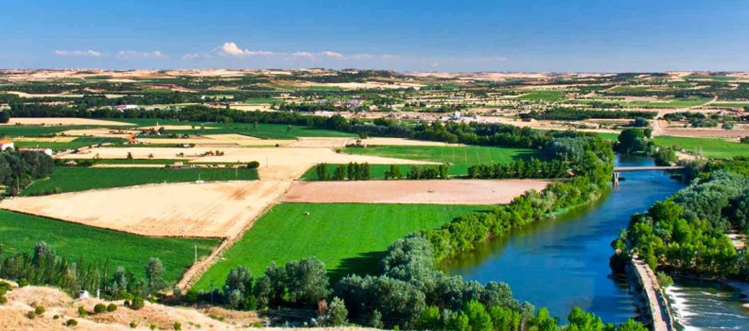 Riberas de Castronuño – Vega del Duero