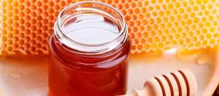 Miel de Liébana España Fascinante