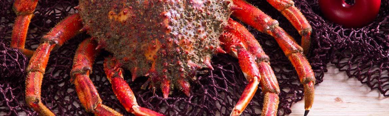 comer marisco viveiro espana fasciante