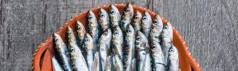 Dormir y Comer en Navia