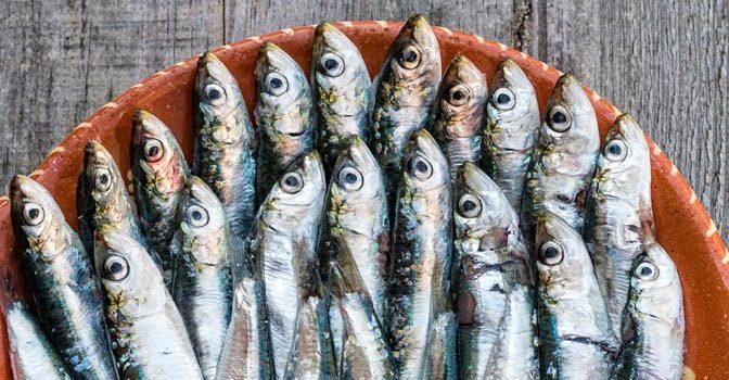 Dónde comer en Navia