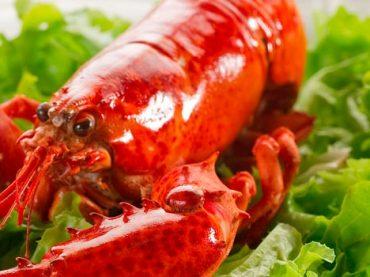 Dónde comer en Pasai Donibane – Pasajes de San Juan