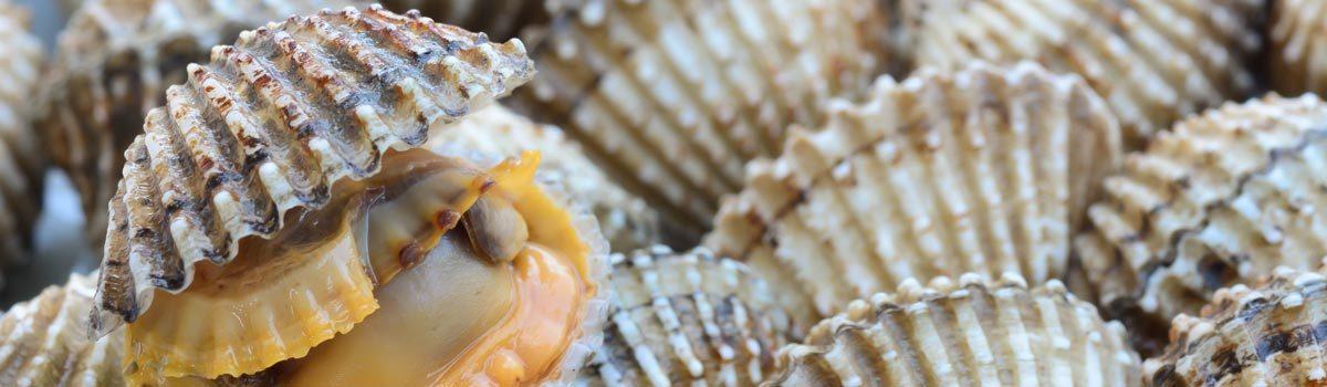 Comer en Cala de Finestrat