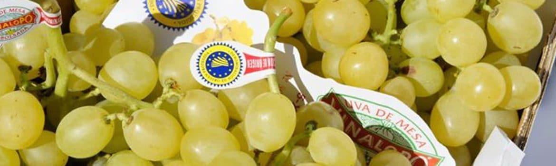 uva vinalopo