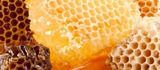 miel tenerife