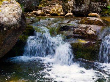Parque Natural de Sierra Cebollera