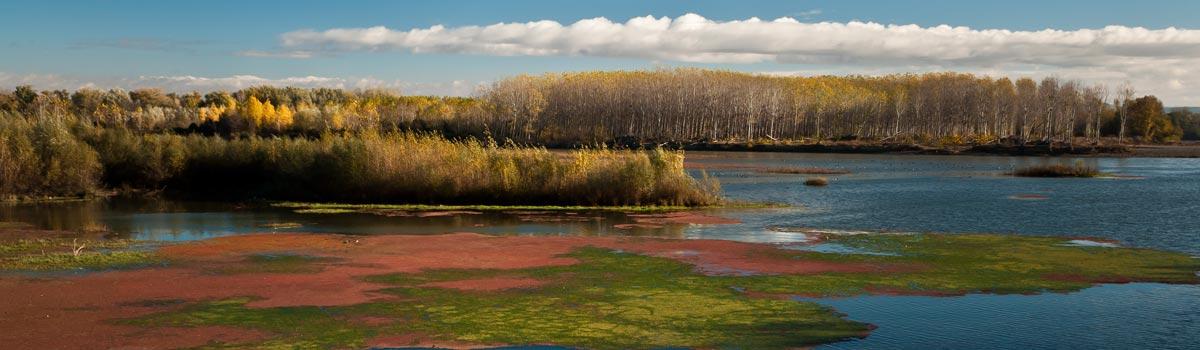 Parque de los Sotos del Ebro España Fascinante