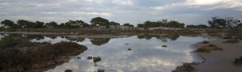 Salinas de San Pedro del Pinatar
