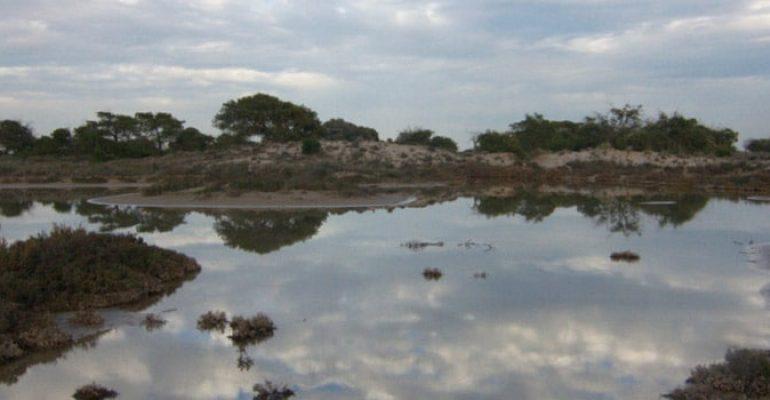 Parque de las Salinas de San Pedro del Pinatar
