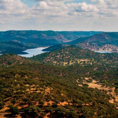 Parque Natural de Sierra de Aracena y Picos de Aroche