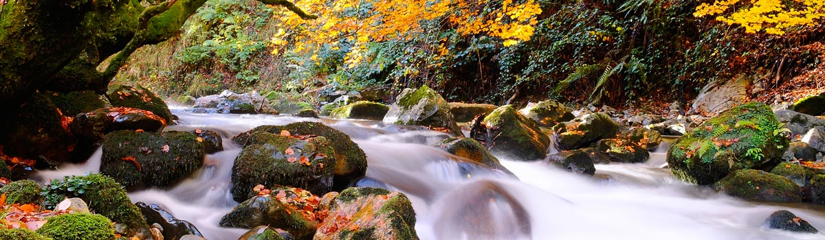 parque natural redes espana fascinante