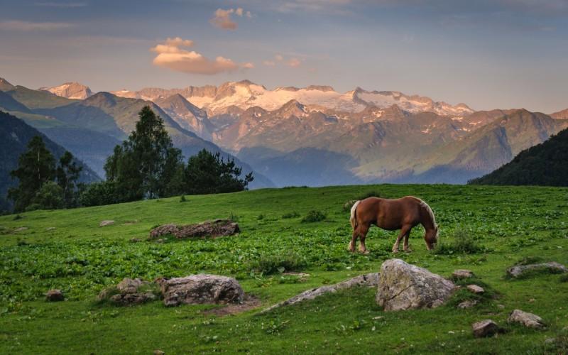 Amanecer en la Sierra de la Maladeta y Aneto, visto desde el valle de Varradós