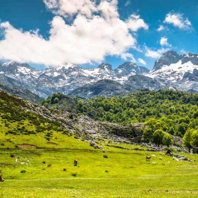 Picos de Europa Cantabria