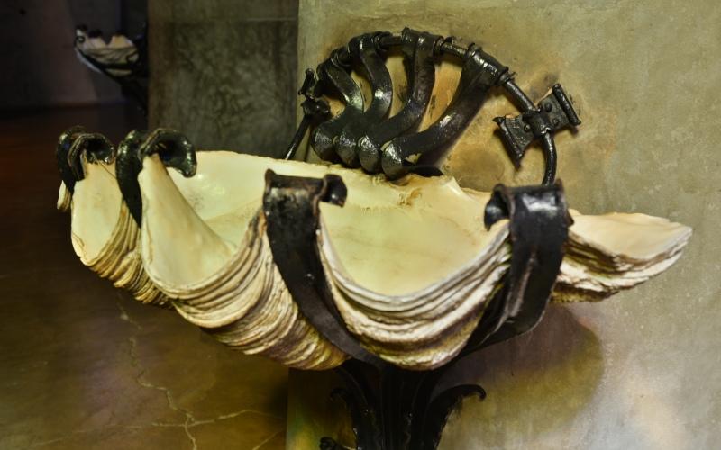 Pila en forma de concha