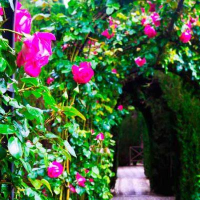 6 jardines con encanto en España