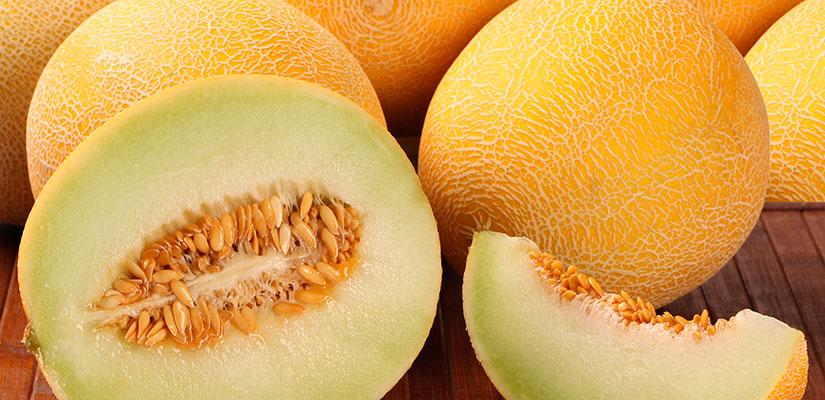 alimentos temporada melon