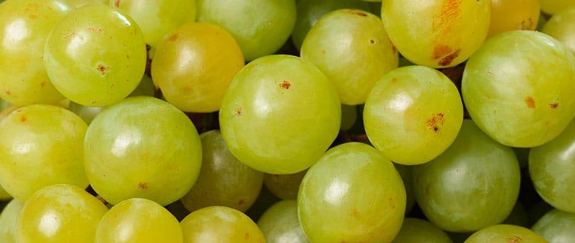 alimentos temporada diciembre uvas