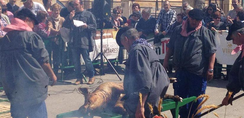 matanza cerdo burgo osma