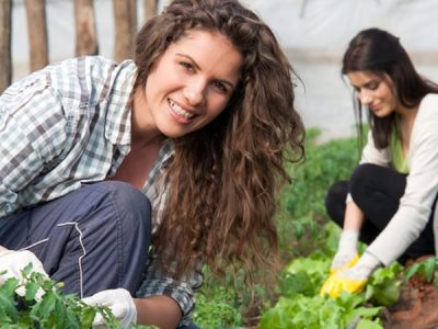Mujeres rurales al poder