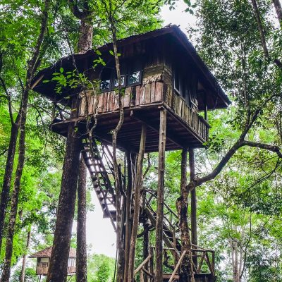 5 casas rurales para dormir en los árboles