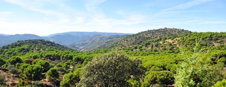 Sierra de Jaén. | Shutterstock