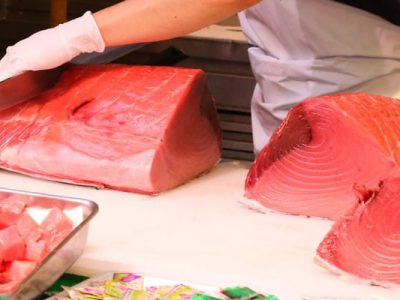 Aprende a diferenciar entre atún de granja o salvaje