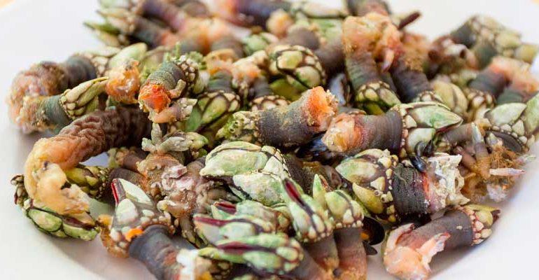 Fiesta de los productos del Mar en Illa de Arousa