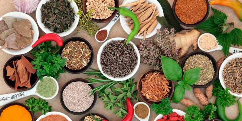 superalimentos alimentos incluir dieta