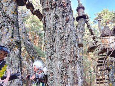 Bosque mágico Fuente del Pino: misterio y encanto en Soria