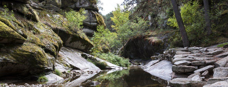 Boca del Asno, montes de Valsaín