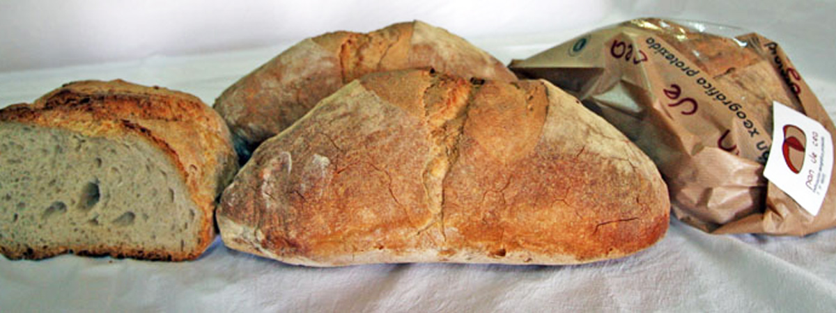 Receta de pan de Cea gallego   España Fascinante
