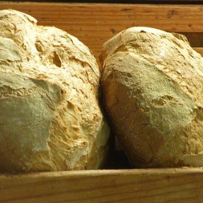 12 días, 12 panes tradicionales: Receta de pan de payés
